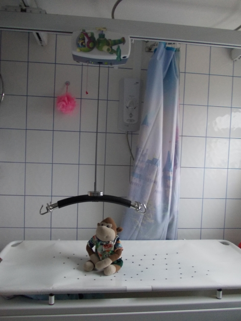 Photo shows a family bathroom with a large white changing table with a toy monkey sat upon it, a ceiling hoist and a shower.