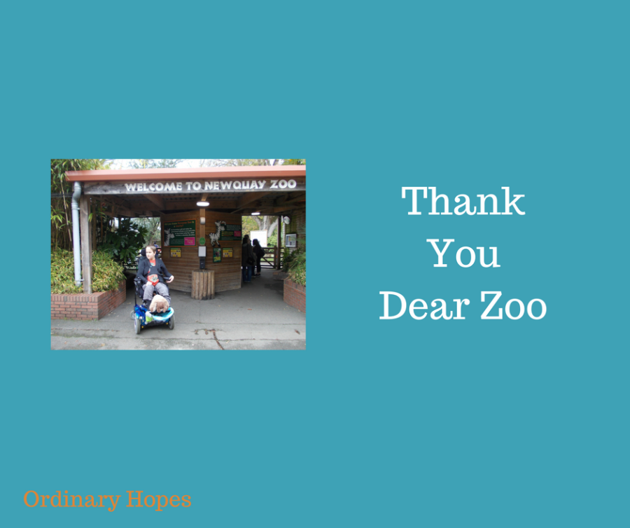 Thank You, Dear Zoo.