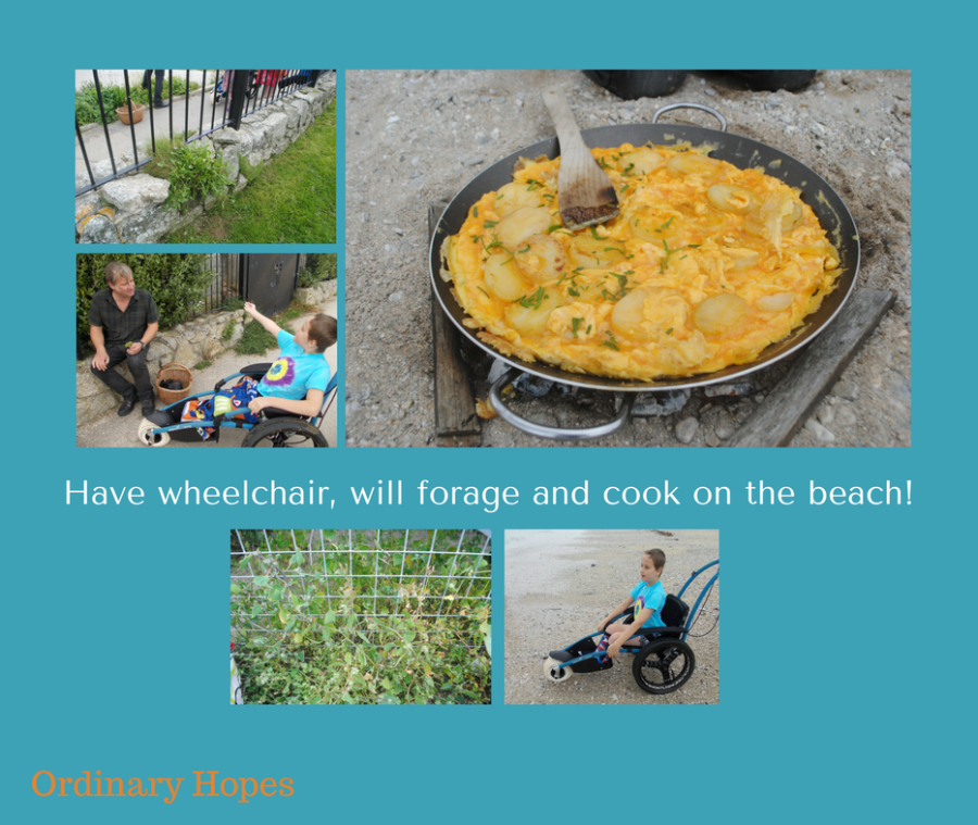 Wheels, Wild Food and Fun!