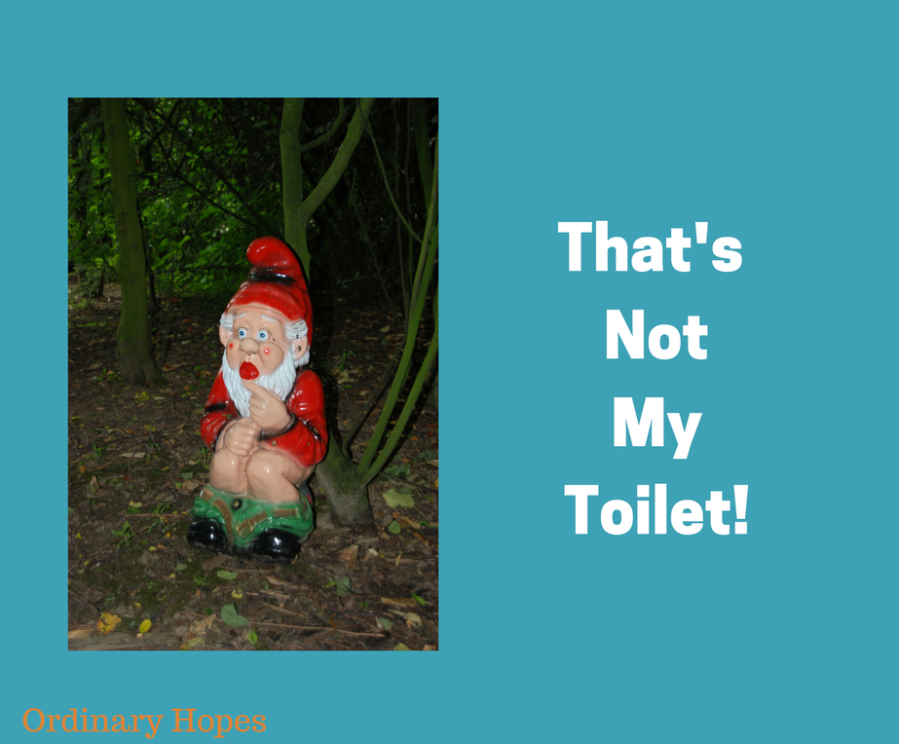 Text says That's not my toilet. Photo shows a gnome squatting beside a tree with his trousers round his ankles.